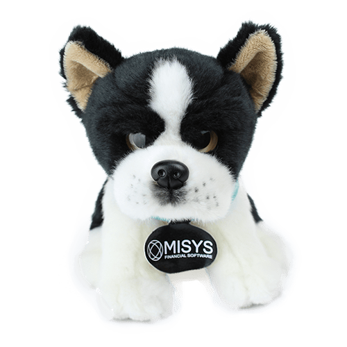 Misys-Boston-Terrier