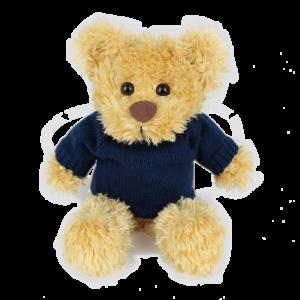 Rocky Blue Jumper Copy Custom Branded Bear