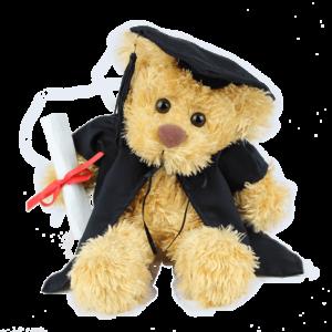 Rocky Graduation Custom Branded Bear